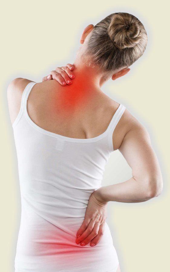 bolecine hrbtenica